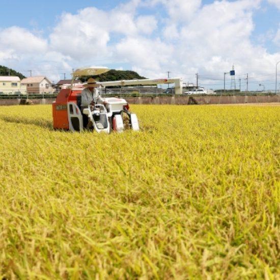地域農業の課題解決